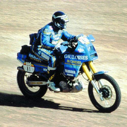 Bild: www.rallye-tenere.net